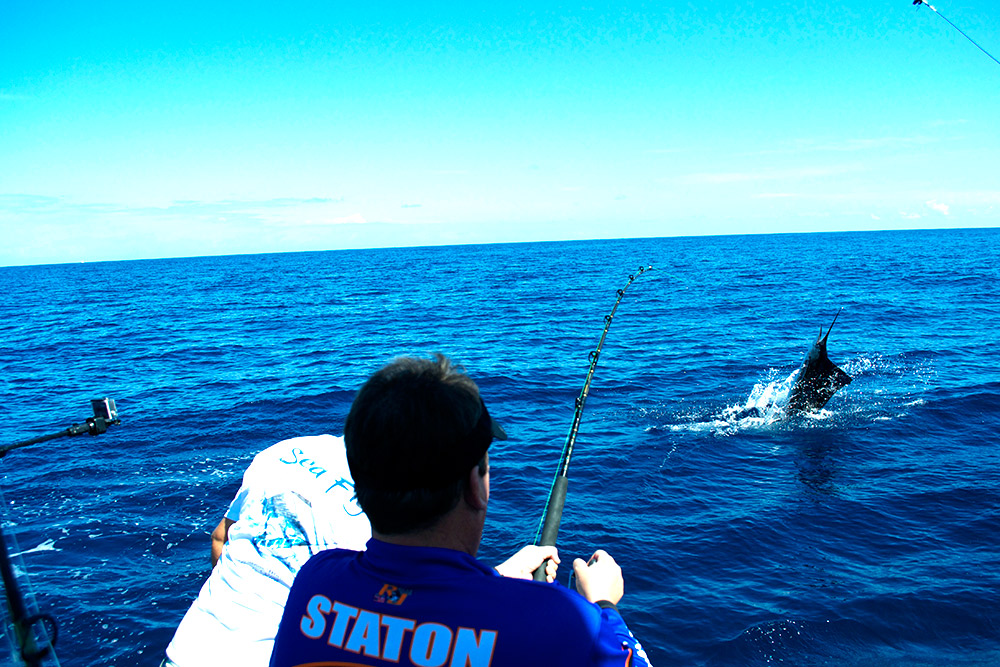 fishing for sailfish